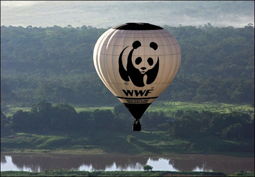 un-ballon-du-world-wildlife-fund-survole-l-amazone